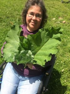 Joanne Bauman herbalist comes to Door County