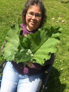 Joanne Bauman herbalist comes to Door County